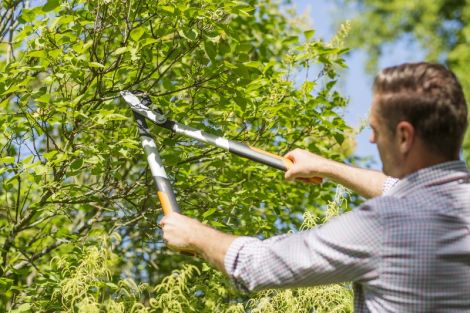 Image 3 - Fiskars - Coupe-branches PowerGearX™ L