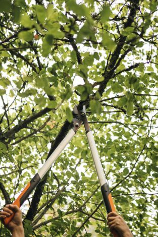 Image 4 - Fiskars - Coupe-branches PowerGearX™ L