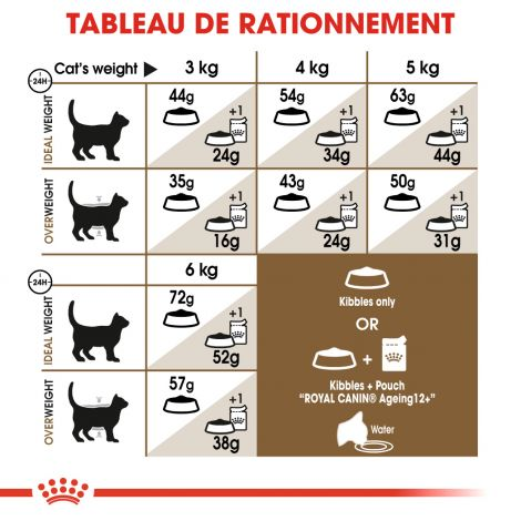 Image 4 - Croquettes Royal Canin Chat Ageing Sterilised 12+ - 2 kg