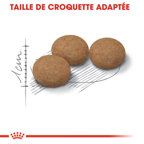 Image 6 - Croquettes Royal Canin Chat Ageing Sterilised 12+ - 2 kg