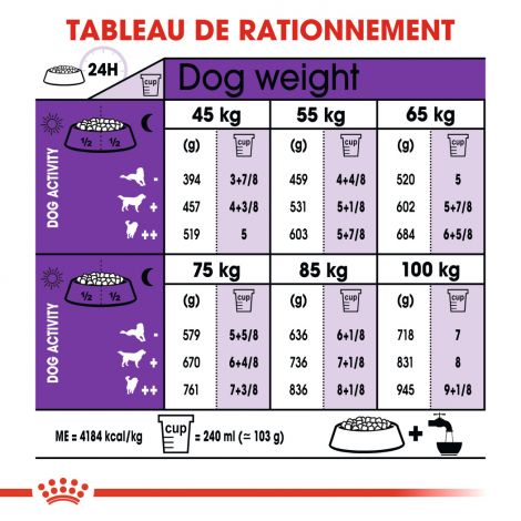 Image 3 - Croquettes Royal Canin Chien Giant Adult 15 kg