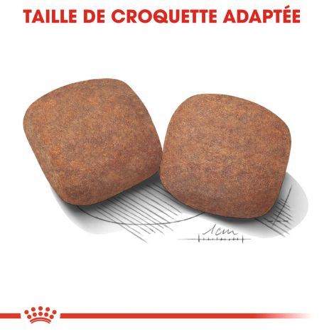 Image 6 - Croquettes Royal Canin Chien Giant Adult 15 kg