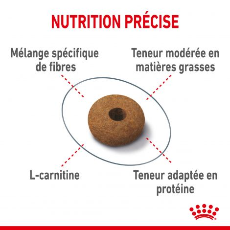 Image 4 - Croquettes Royal Canin Chat Appetite Control Care 3,5 kg