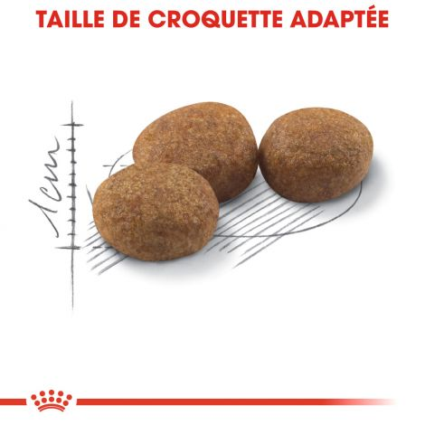 Image 5 - Croquettes Royal Canin Chat Sterilised 37 - 2 kg