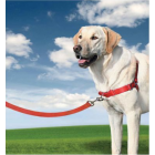 Petsafe - Harnais Easy walk Rouge Taille L
