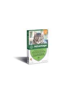 Advantage 40 - Traitement anti-puces chat et lapin 4 pipettes