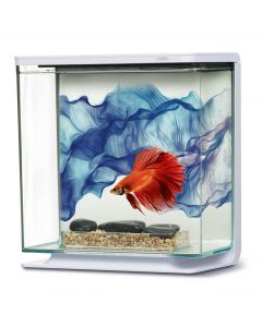 Aquarium BETTA KIT Bleu 3 L