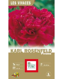 Bulbe de Pivoine karl rosenfield