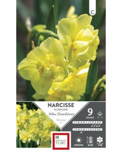Bulbes de Narcisse Pluriflore Yellow Cheerfulness x9 cal. 12/14