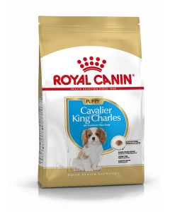 Royal Canin - Croquettes Cavalier king charles junior 1,5 kg