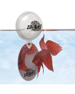 Floating Betta Exercise Mirror