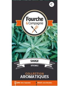 Fourche & Cie - Graines de Sauge officinale