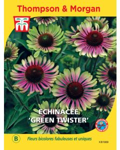 Graines d'Echinacée Green Twister