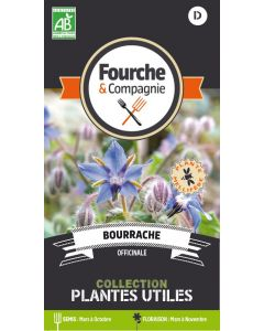 Graines de Bourrache officinale