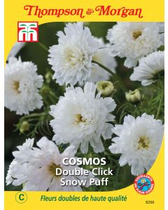 Graines de Cosmos Double Click Snow Puff