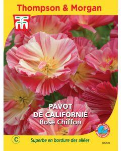 Graines de Pavot De Californie Rose Chiffon
