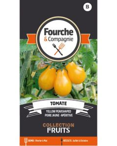 Graines de Tomate yellow pearshhaped