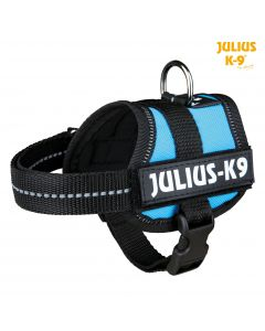 Harnais Power Julius-K9®, Baby 1/XS: 30–40 cm/18 mm, aigue-marine
