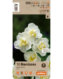 Jardiland - Bulbes de Narcisse tazetta cheerfulness x10