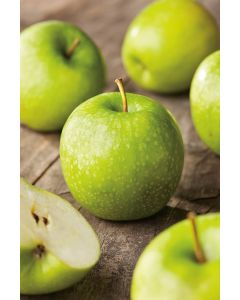 Pommier 'Granny Smith'