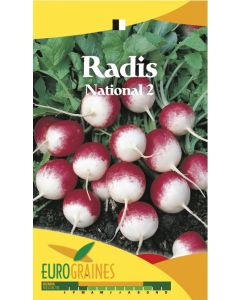 Radis National 2  EUROGRAINE