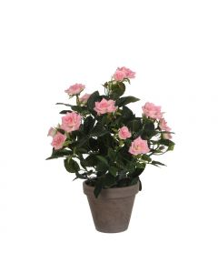 Rosier Rose Artificiel en pot Stan gris H.33 x Ø 25 cm