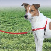 Miniature 1 - Petsafe - Harnais Easy walk Rouge Taille S