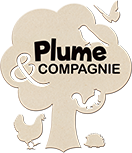 Plume & compagnie