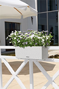 Lechuza - Balconera Cottage 50 kit complet, blanc